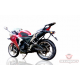 Honda CBR 250r RearRack with Saddle Stay